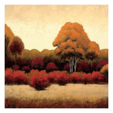 Autumn Forest I Premium Giclee Print by James Wiens