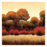 Autumn Forest II Premium Giclee Print by James Wiens