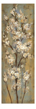 Almond Branch II Premium Giclee Print by Silvia Vassileva
