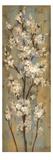 Rama de almendro II Lámina giclée premium por Silvia Vassileva