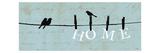 Birds on a Wire Premium Giclee-trykk av  Pela