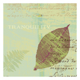 Tranquility Giclee Print by Wild Apple Portfolio