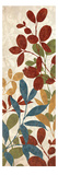 Leaves of Color I Premium Giclee Print by Hugo Wild