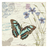 Papillon Tales I Premium Giclee Print by  Pela