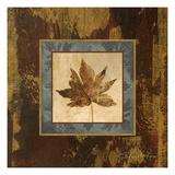 Autumn Leaf Square IV Premium Giclee Print by Silvia Vassileva