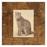 Panther Giclee Print by Wild Apple Portfolio