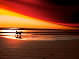 Dog at Sunset Photographic Print by Josh Adamski