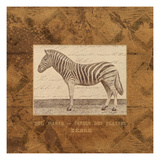 Zebra Giclee Print by Wild Apple Portfolio