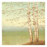 Golden Birch II with Blue Sky Premium Giclee Print by James Wiens