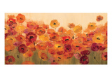 Summer Poppies Reproduction procédé giclée par Silvia Vassileva