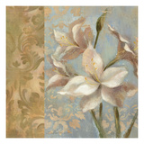 Amaryllis on Soft Blue Giclee Print by Silvia Vassileva
