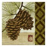 Summer Pine II Premium Giclee Print by Mo Mullan