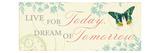 Times Flies III Premium Giclee Print by  Pela