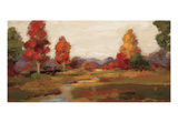 Fall Creek Giclee Print by Silvia Vassileva
