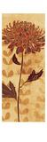 Sarah's Garden I Premium Giclee Print by Sarah Adams