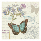 Papillon Tales II Premium Giclee Print by  Pela