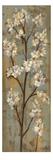 Almond Branch I Premium Giclee Print by Silvia Vassileva