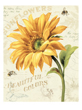 Under the Sun II Premium Giclee Print by Lisa Audit