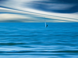 Wind Surfing Photographic Print by Josh Adamski