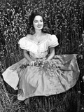 Ann Blyth, 1949 Photo