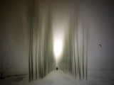 The Avenue Photographic Print by Josh Adamski