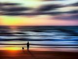 Enebro Lámina fotográfica por Josh Adamski