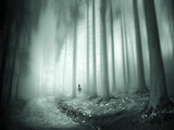 Riding in the Woods Photographic Print by Josh Adamski