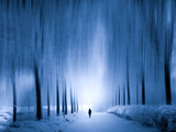 Cold Walk Photographic Print by Josh Adamski