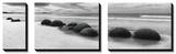 Moeraki Boulders Panorama Posters by Monte Nagler
