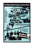The Curse of the Fly, 1965 Posters