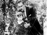 The Fly, Charles Herbert, Vincent Price, 1958, Spider Web Poster