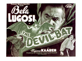 The Devil Bat, Bela Lugosi, Suzanne Kaaren, 1940 Photo