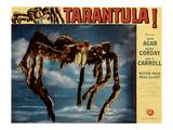 Tarantula!, 1955 Poster