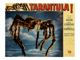 Tarantula!, 1955 Photo