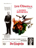 The Birds, (AKA 'Alfred Hitchcock's the Birds'), Alfred Hitchcock, Tippi Hedren, 1963 Photo