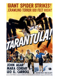 Tarantula, John Agar, Mara Corday, 1955 Photo