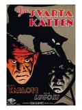 The Black Cat, (AKA Den Svarta Katten), L-R: Boris Karloff, Bela Lugosi, 1934 Plakaty