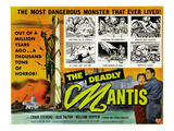 The Deadly Mantis, Bottom Right, From Left: Alix Talton, Craig Stevens, 1957 Posters