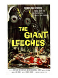 Attack of the Giant Leeches (AKA the Giant Leeches), 1959 Zdjęcie