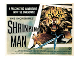 The Incredible Shrinking Man, 1957 Posters
