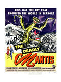 The Deadly Mantis, Bottom From Left: Alix Talton, Craig Stevens, 1957 Prints