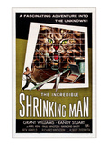 The Incredible Shrinking Man, 1957 Prints