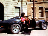Cleopatra Jones, Tamara Dobson, 1973 Photo