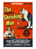 The Incredible Shrinking Man, 1957 Poster