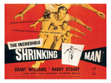 The Incredible Shrinking Man, Grant Williams, 1957 Kunstdrucke