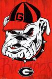 University of Georgia Bulldogs NCAA Poster Plakat