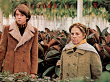 Harold And Maude, Bud Cort, Ruth Gordon, 1971 Photographie