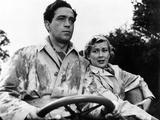 Genevieve, John Gregson, Dinah Sheridan, 1953 Photo