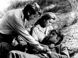 Love Me Tender, Richard Egan, Debra Paget, Elvis Presley, 1956, Dying Posters