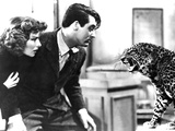 Bringing Up Baby, Katharine Hepburn, Cary Grant, Baby The Leopard, 1938 Photo